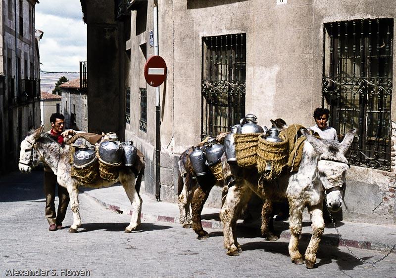 Donkey delivery