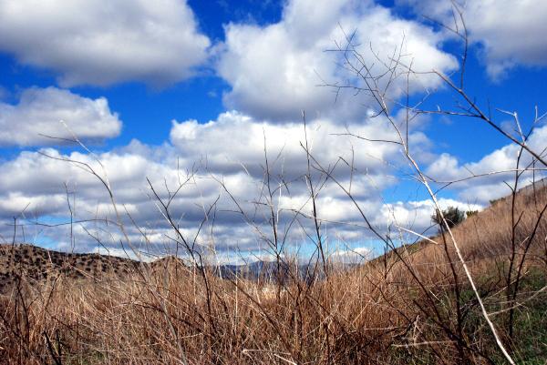 2007-02-27_13-10-16.JPG