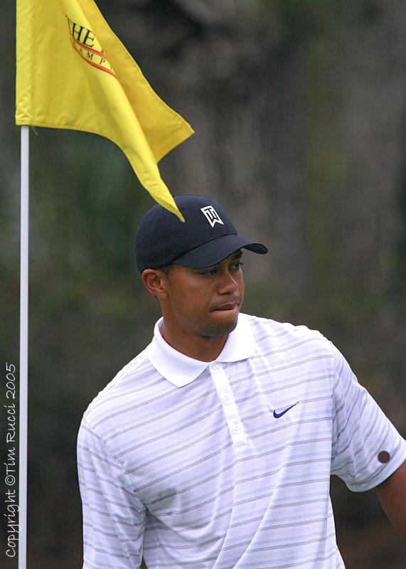 25476 - Tiger Woods