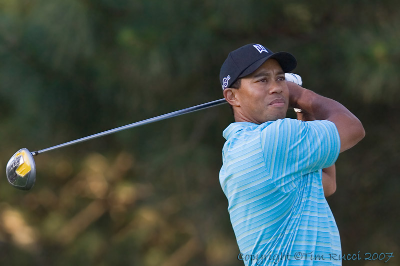 29311 - Tiger Woods