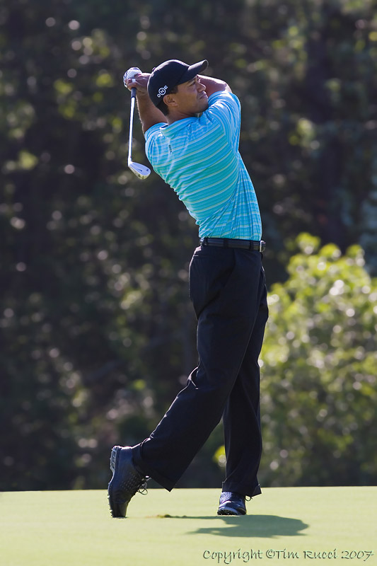 29615 - Tiger Woods
