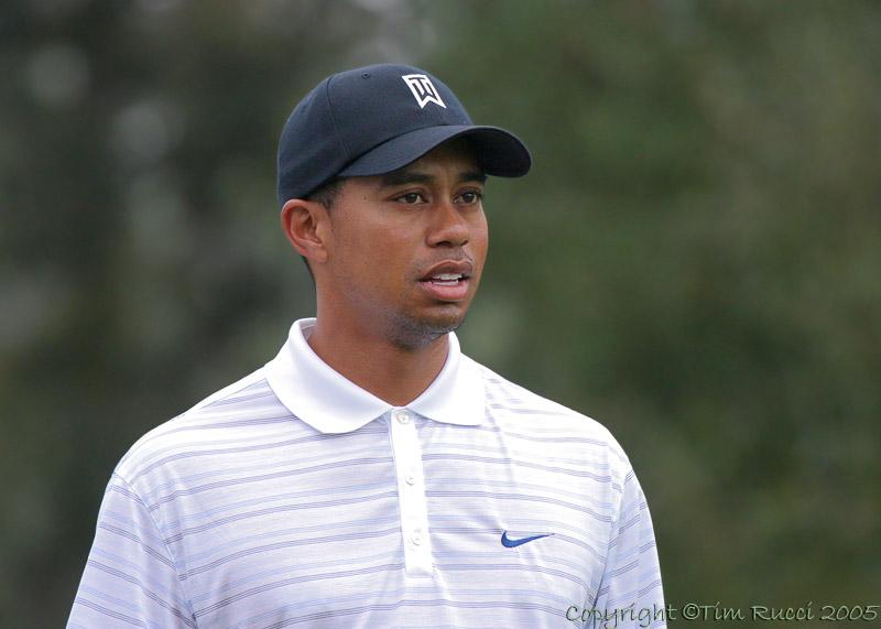25494c - Tiger Woods