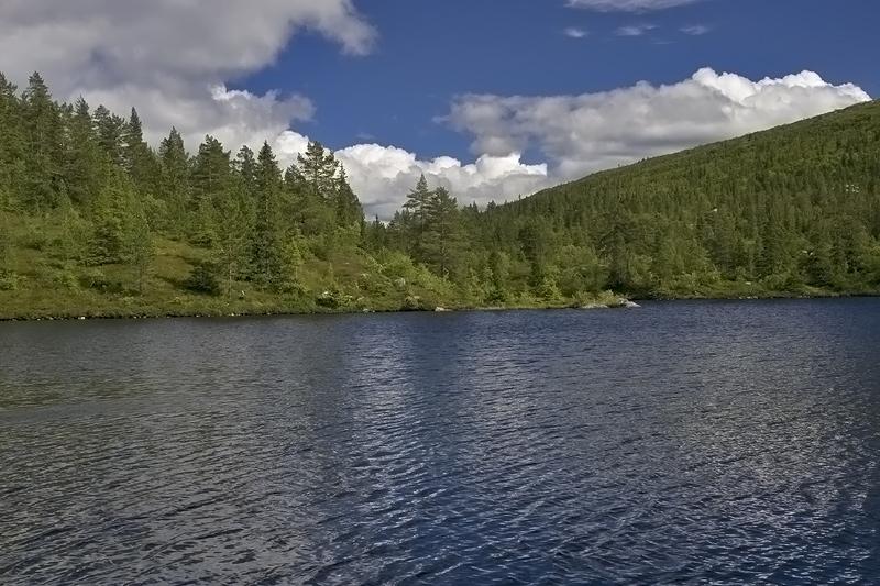 Pråmtjønn, Lifjell, Telemark, Norway