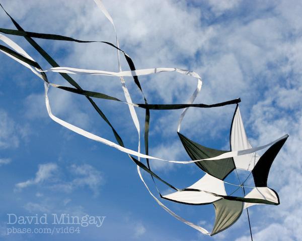 Jul 21: Kite thing
