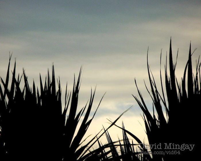 Jan 23: View