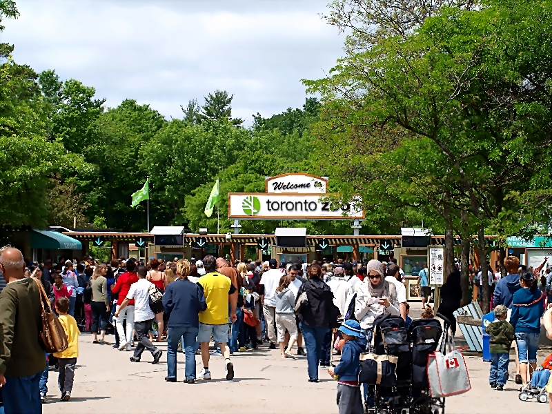 Welcome to Toronto Zoo