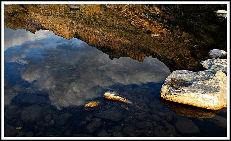 Sabino Canyon Reflection