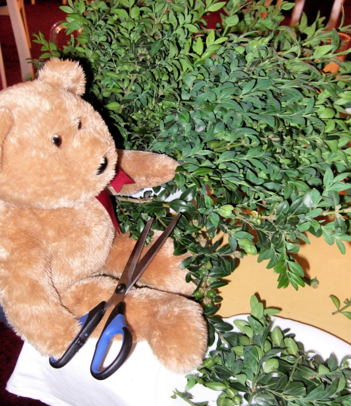 Im helping to prepare the little branches of myrtle...