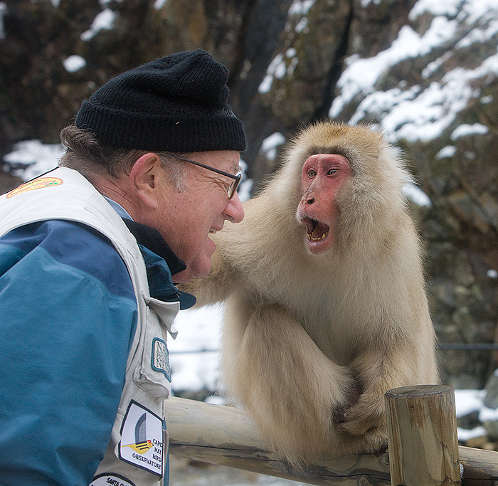 Monkey and photographer surprised