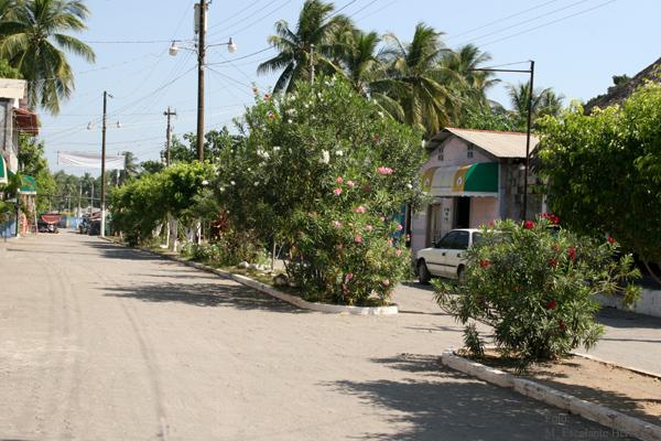 Calle Principal a la Playa Publica