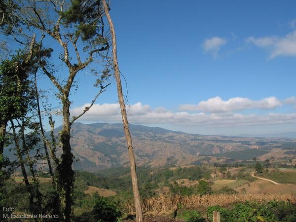 Panoramica del Altiplano de Guatemala