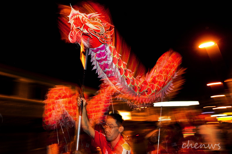 The dragon dance (7699)