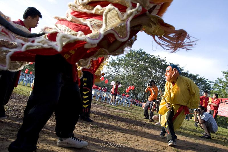Lion dance (8079)