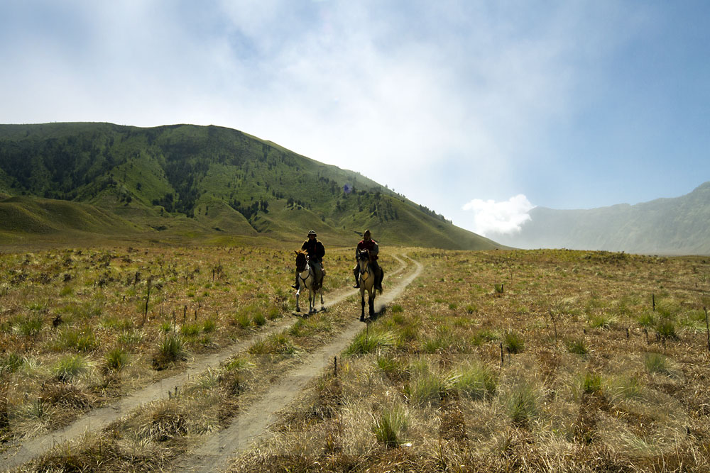 Riders at the Savanna