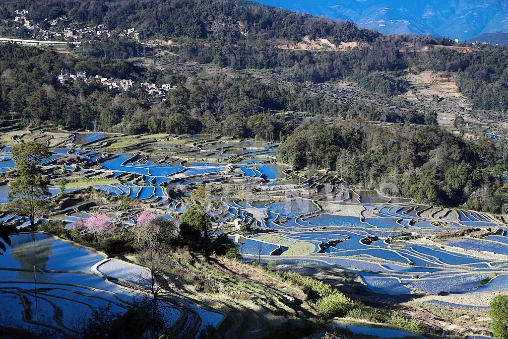 Rice fields and hills, QingKou - Hani village