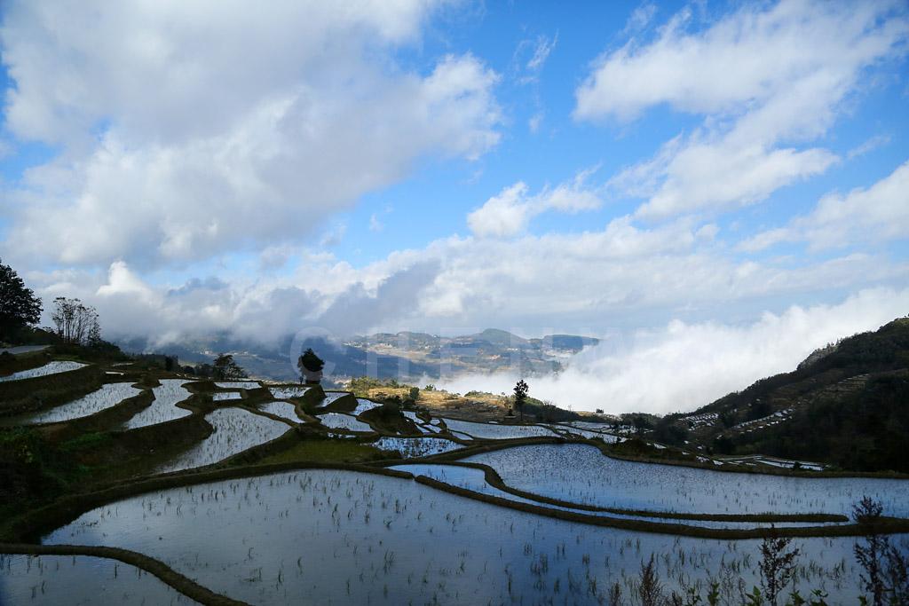 Qingkou