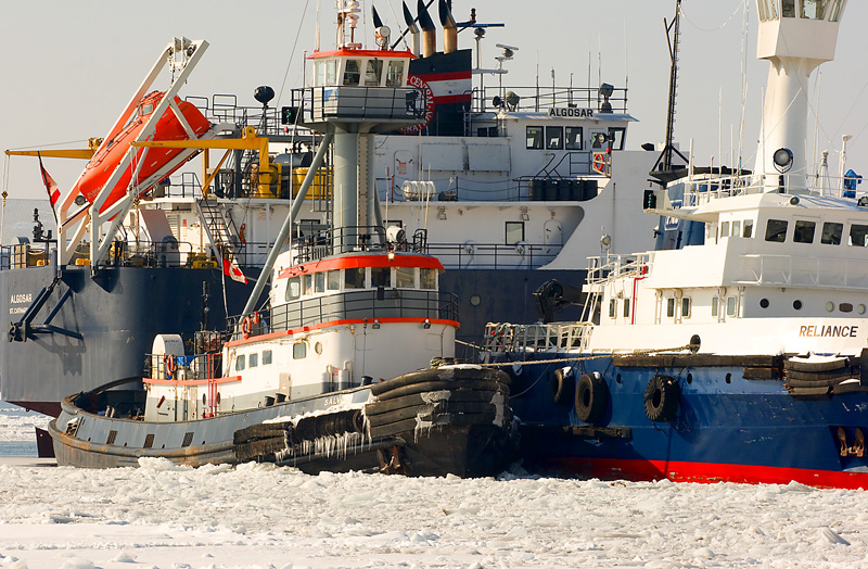 Frozen Ships