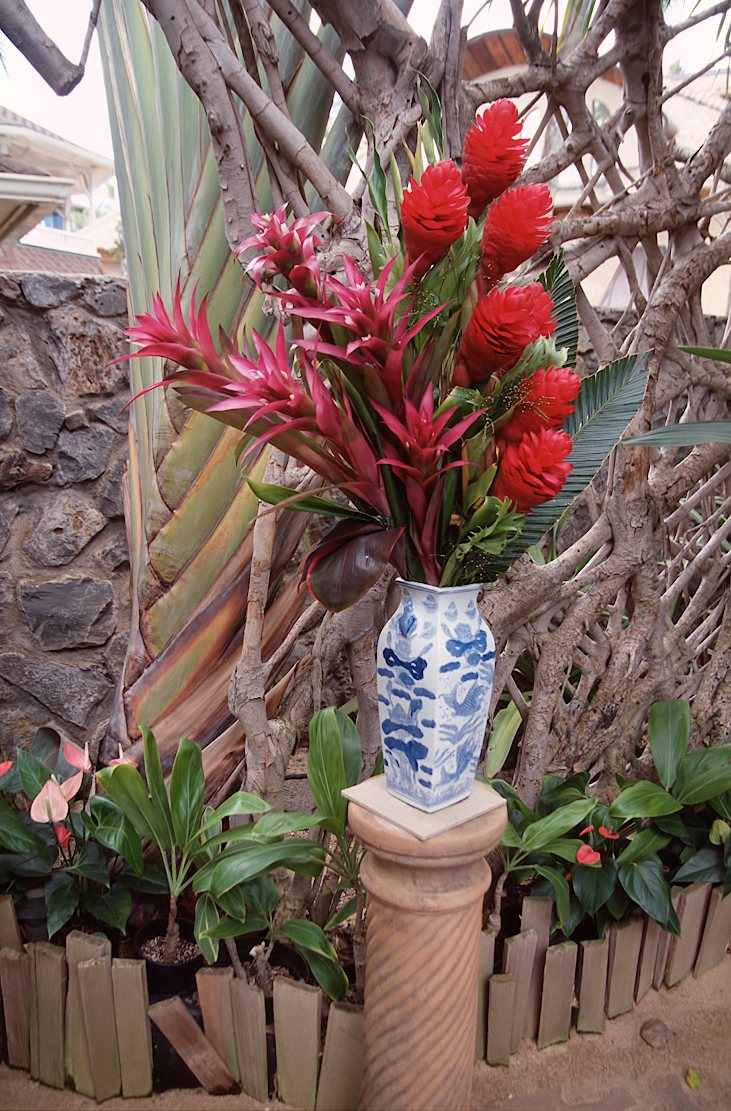 01C-08-Hawaiian Flowers
