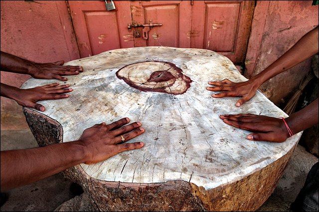 Hands on Wood