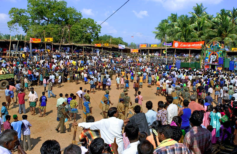 The crowd at Paalamedu