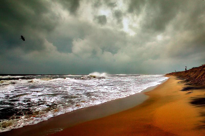 The Endless Coromandel Coast