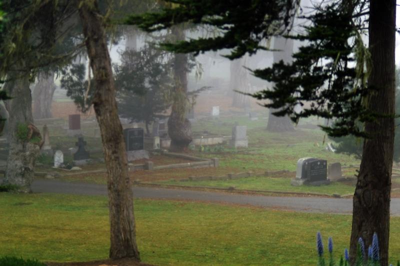 Pacific Grove Cemetary 02