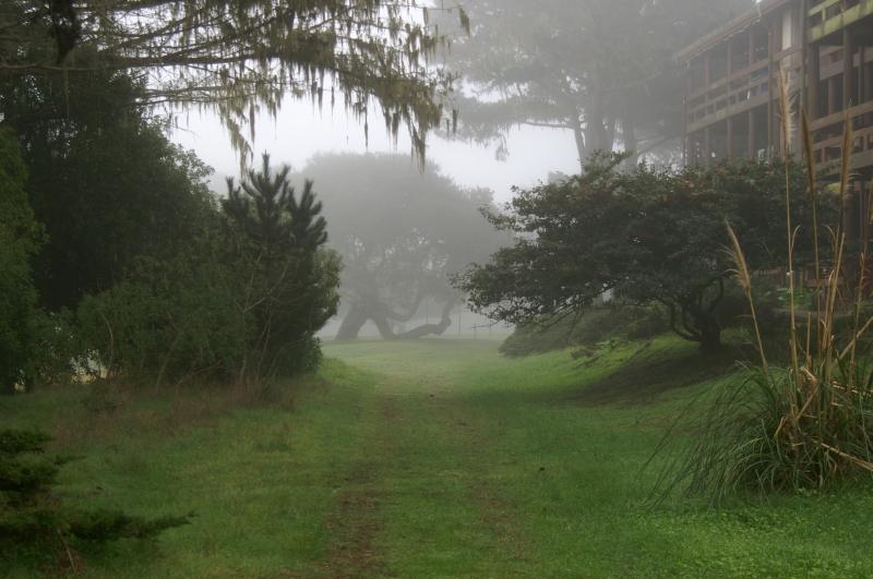 Pacific Grove Cemetary 04