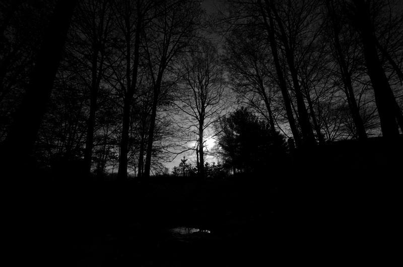 Vogt Full Moon