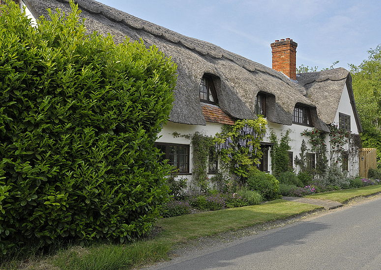 A Tour Of The Outside Of  A Thatched Roof House