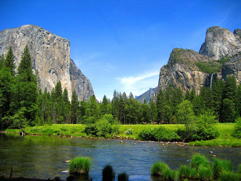 Yosemite river meadow