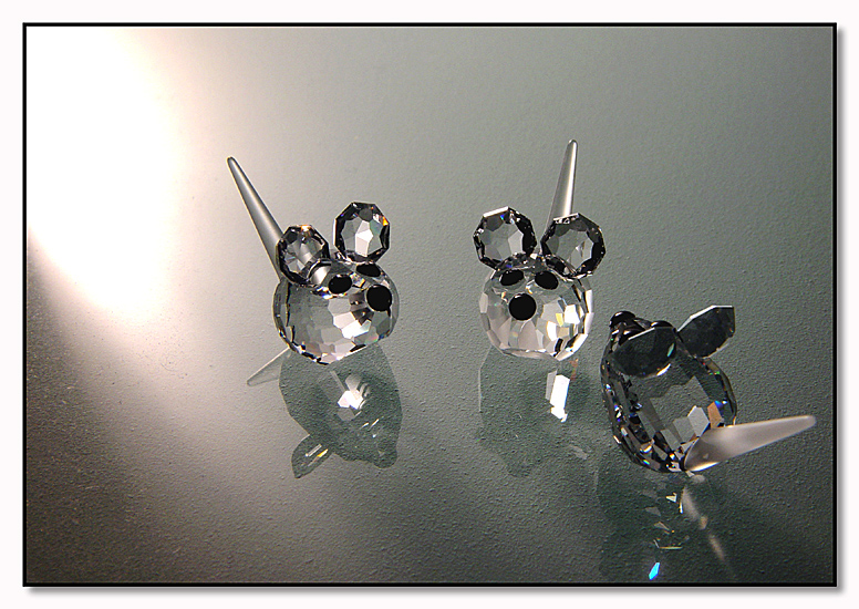 <b>Three Blinded Mice</b><br>Header photo