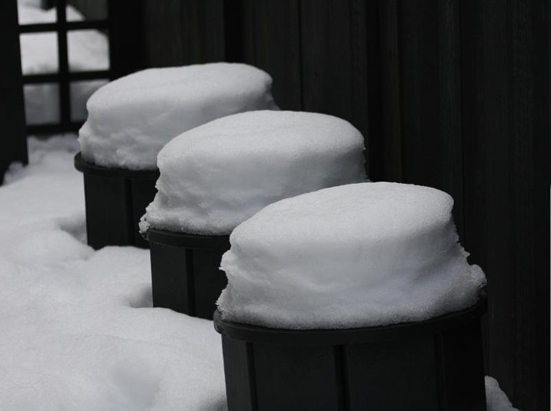 <nobr>Natures Baking Soda Biscuits<br>by willvan