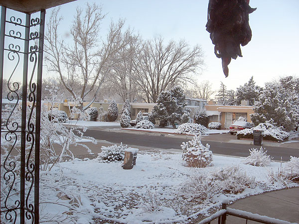 Best snow yet for ABQ in 2008