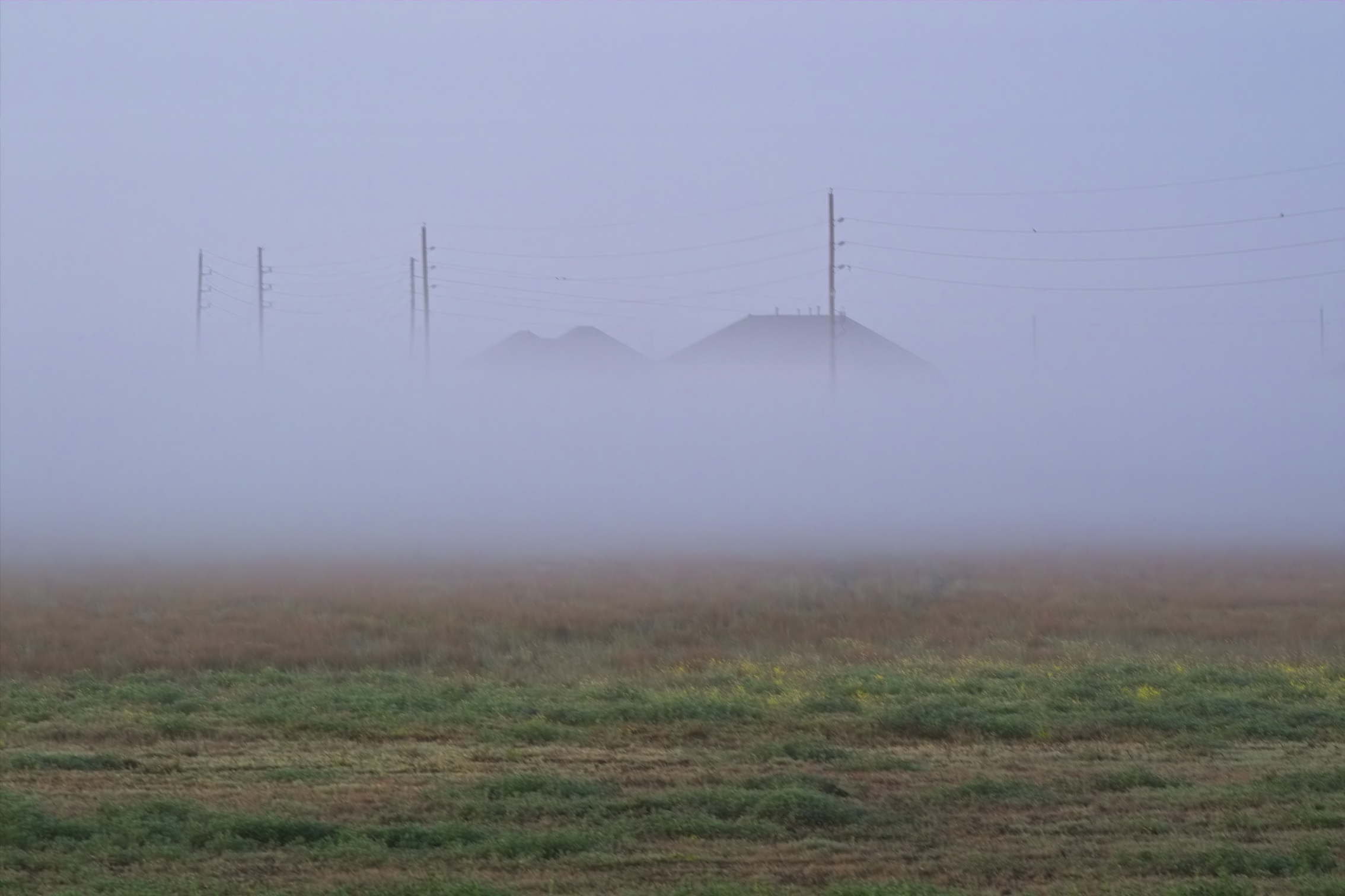 Fog Bank Rolling In