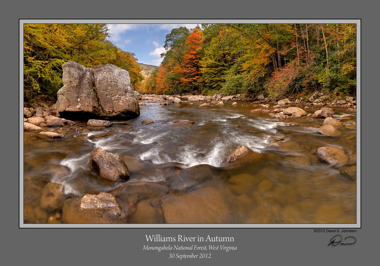 Williams River Autumn 2.jpg