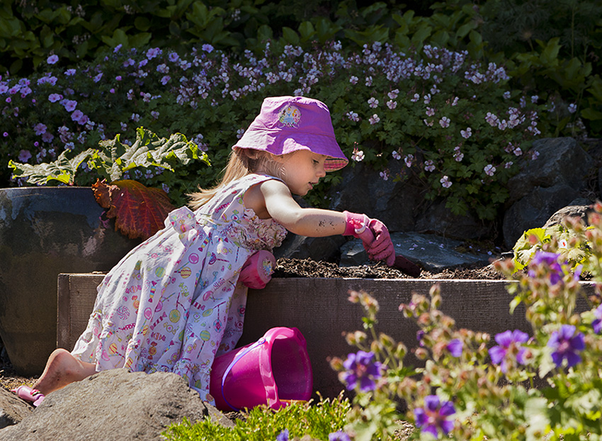 Planting in pink