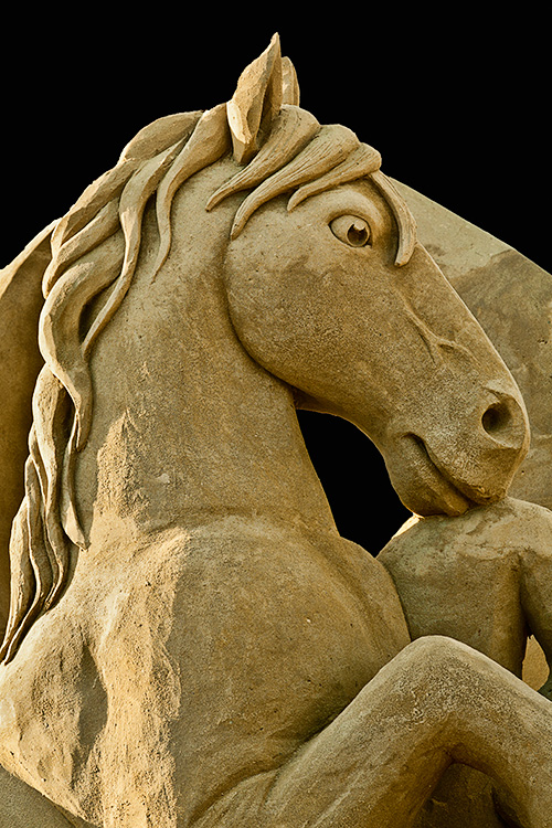 Horse Power by Fred Dobbs & David Billings  (click to enlarge)