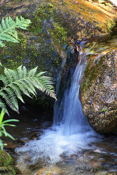 small waterfall by Julie