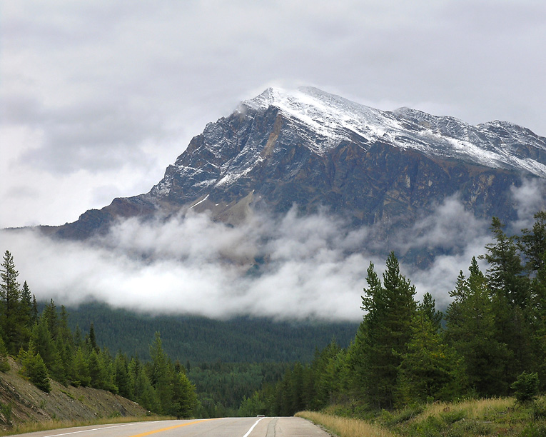 On the Icefields Highway