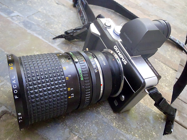 Olympus E-PL1 with Minolta MD-mount adapter & Focal 28-80mm macro lens