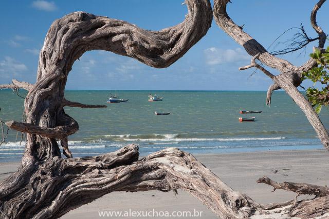 Praia da Barrinha, Acarau, Ceara 007