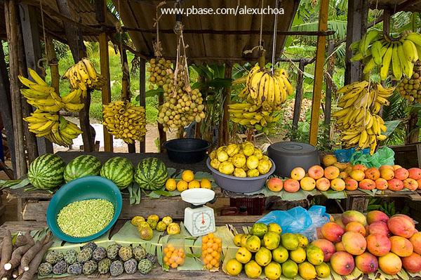 Frutas tropicais_DSC7052.jpg
