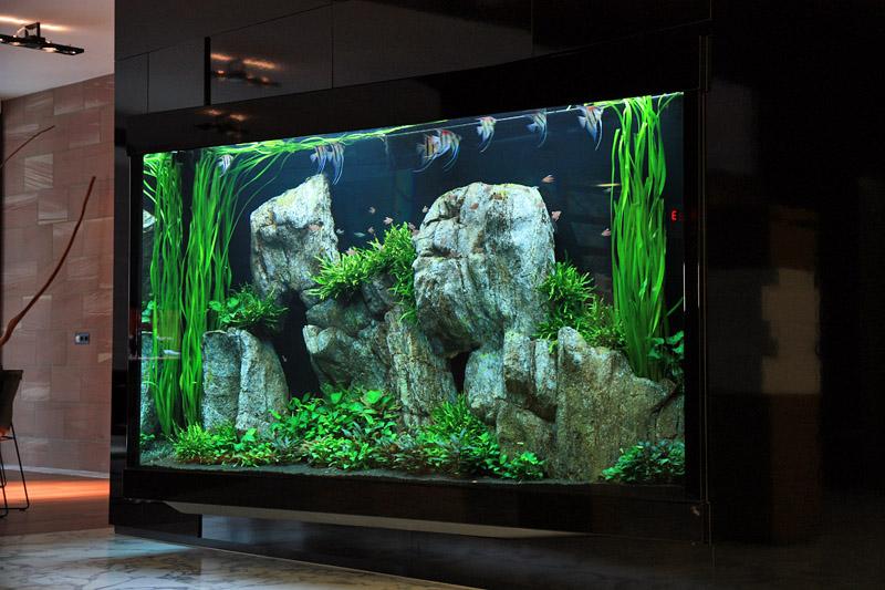 Liter Aquascape By Oliver Knott