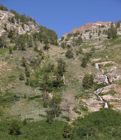 Island Creek? cascades into Lamoille Canyon