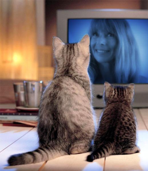 Patricia Kay On TV :))~