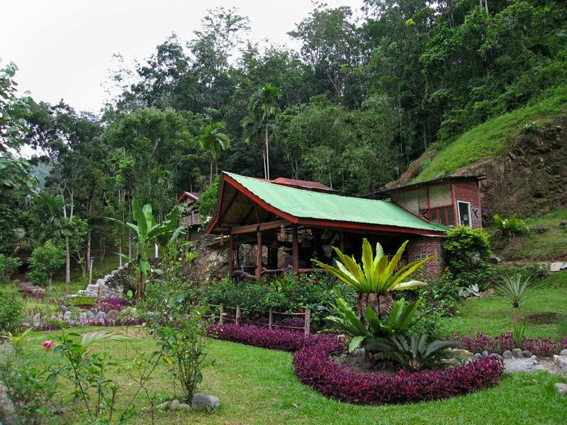 Guest house, Bukit Lawang