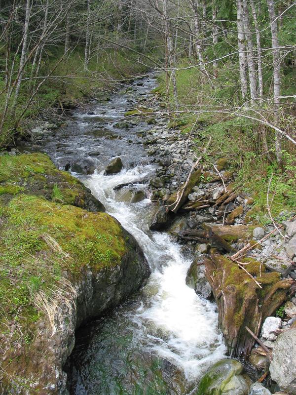 Duffey Creek