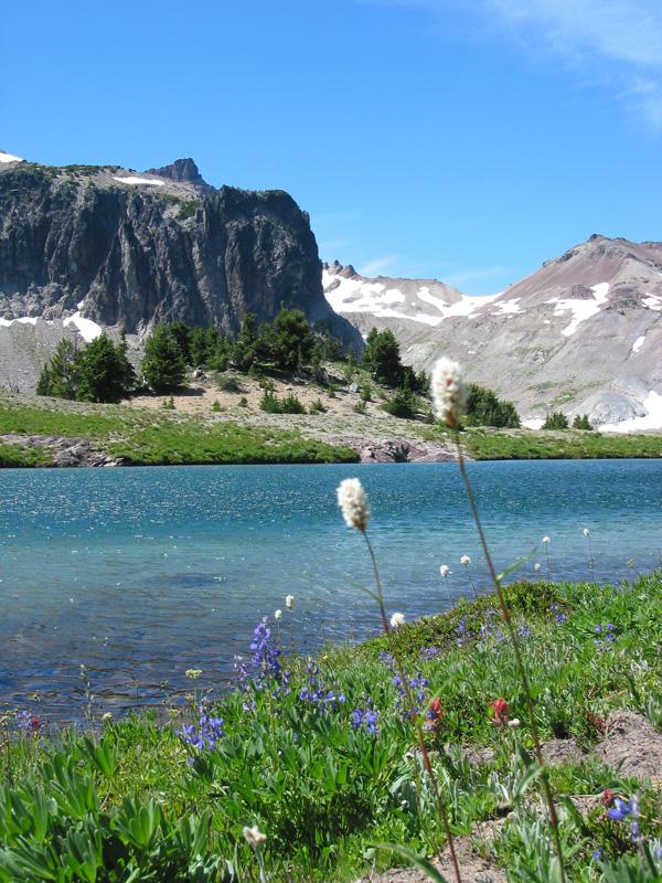 Flowers and Views at Warm Lake