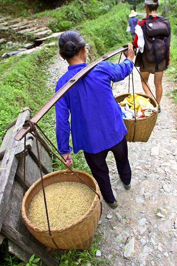 0331 Carrying rice to be cleaned and hulled.