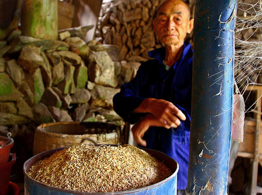 0718 Rice hulling.